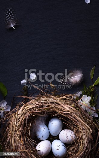 istock Happy Easter;  Easter eggs in nest and spring flower on table background 918098942