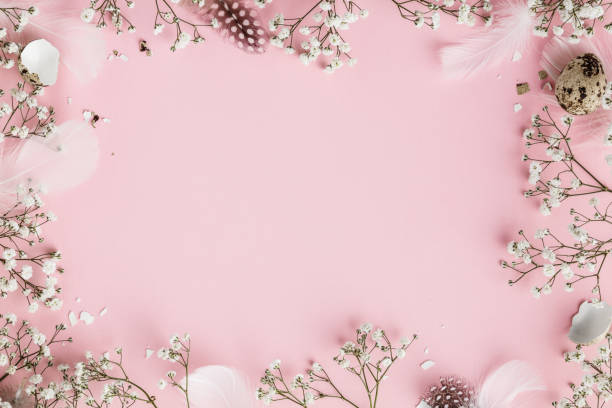 Happy Easter frame with flowers, feathers and egg shells on pink background