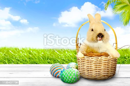 930928526 istock photo Happy Easter 1135437736