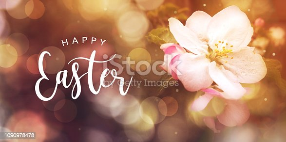 istock Happy Easter text with apple blossom flower and bokeh lights 1090978478