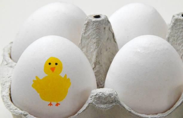 frohe ostern mit dieser box von eiern - lustiges huhn bilder stock-fotos und bilder