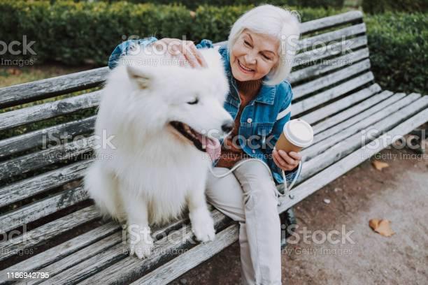 Happy elderly caucasian lady palming nice dog in park picture id1186942795?b=1&k=6&m=1186942795&s=612x612&h=iktimujxmwwixiquzzjymbkqicqrn0nbiqy5zkpi ig=