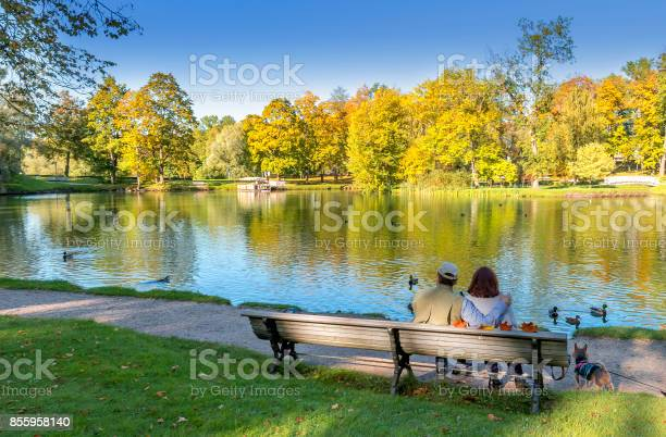 Photo of Happy elderly couple are resting on the wooden bench