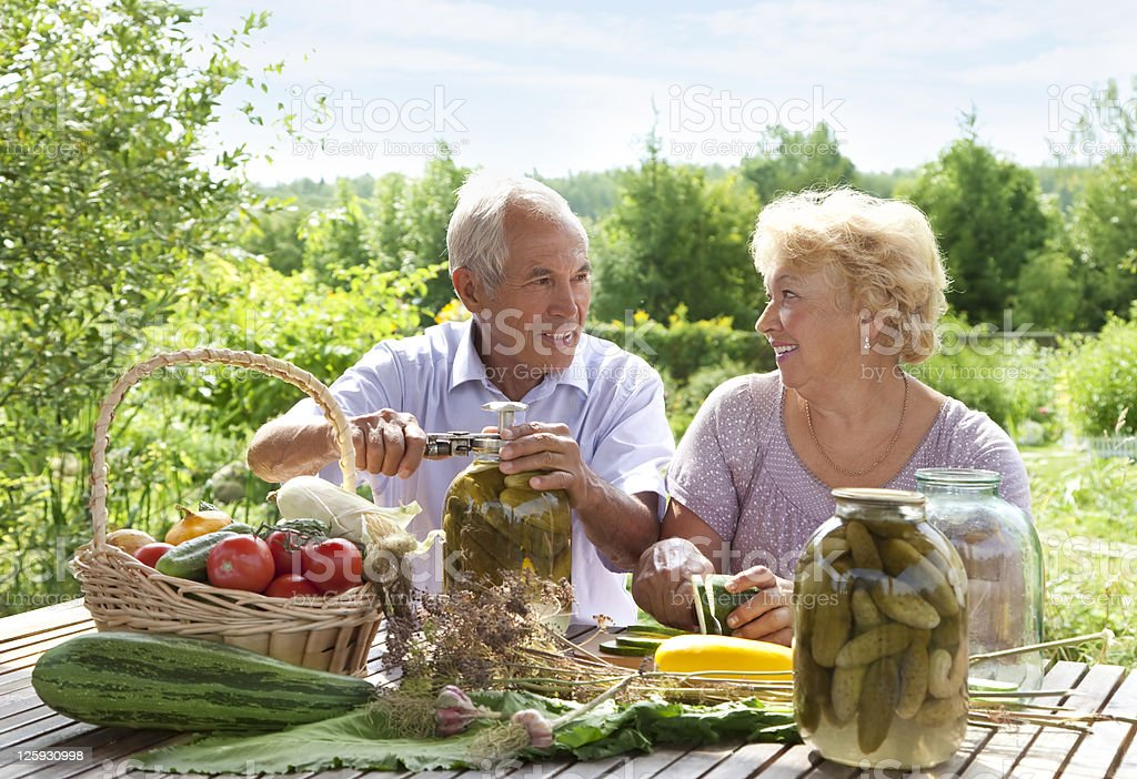 Happy elderly couple royalty-free stock photo