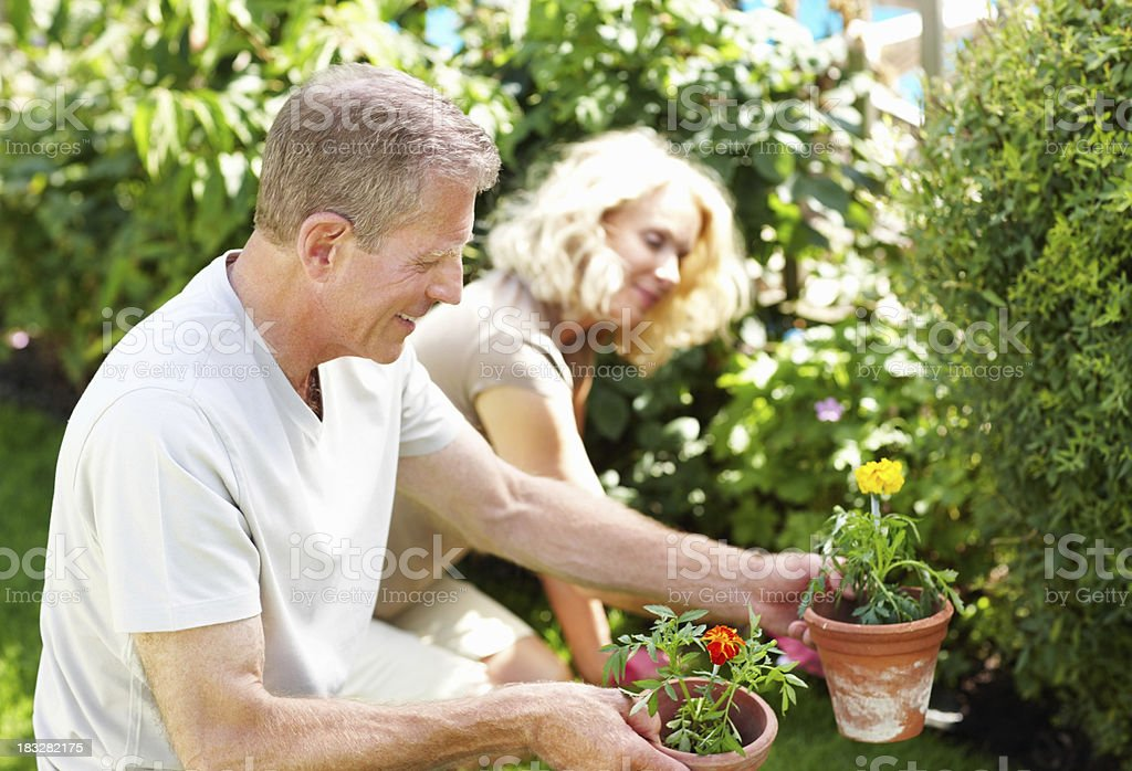 Happy elderly man with woman working in the garden royalty-free stock photo