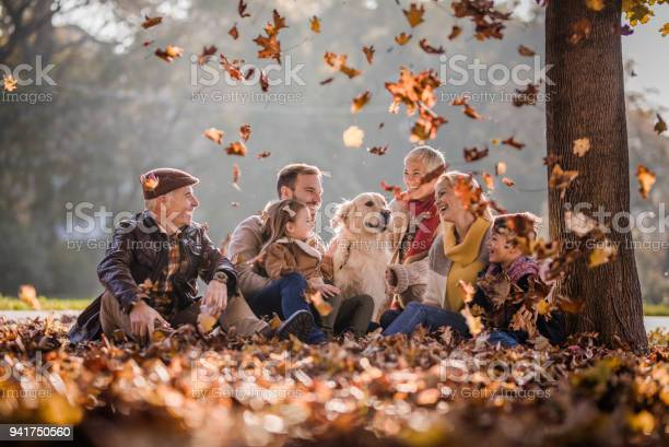 Happy extended family and golden retriever among autumn leaves at the picture id941750560?b=1&k=6&m=941750560&s=612x612&h=kdz hojgvohl1fa4solfigxwyy2bdzaiopkhhvoxafa=
