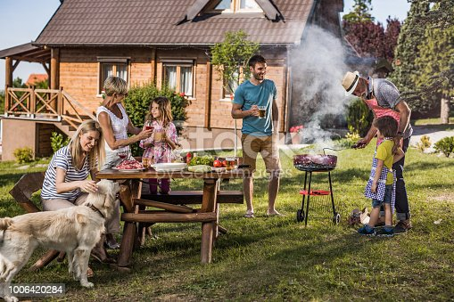 istock Happy extended family enjoying in barbecue party in the backyard. 1006420284