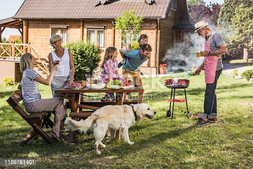 istock Happy extended family enjoying in barbecue party in the backyard. 1159751401