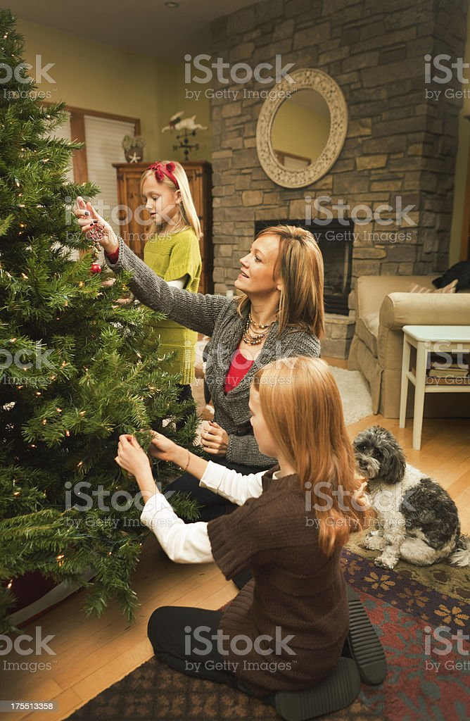 Happy Family and Dog Working Together Decorating Christmas Tree Vt royalty-free stock photo