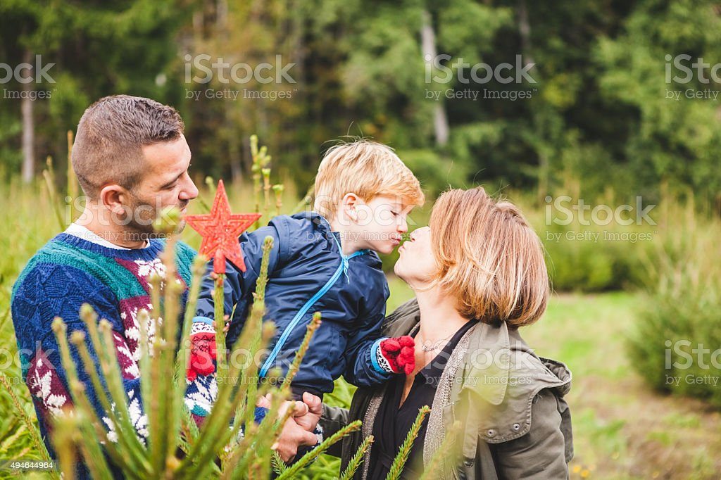 Happy Family Decorating an Outdoors Fir Tree for Christmas stock photo