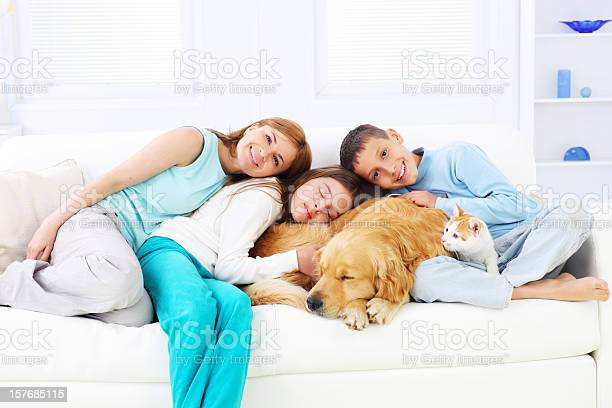 Happy family embracing sleeping dog and cat picture id157685115?b=1&k=6&m=157685115&s=612x612&h=hhffcmqevpgh mh niokgeccbulpa04fxszzsqee wo=