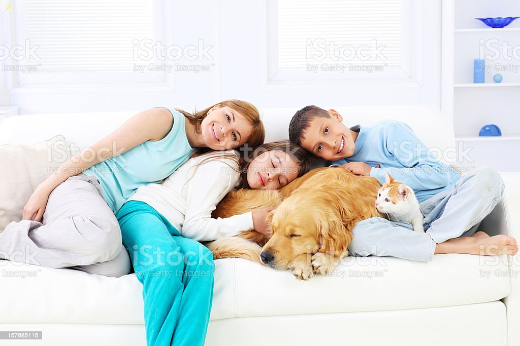 Happy family embracing sleeping dog and cat. stock photo