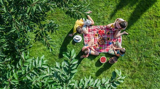 Happy family having picnic in park, parents with kids sitting on grass and eating healthy meals outdoors, aerial drone view from above