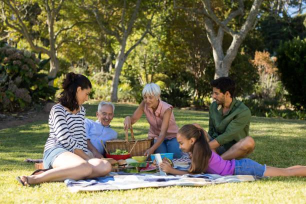 feliz família tendo fazer um piquenique no parque - piquenique - fotografias e filmes do acervo