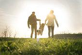istock Happy family heaving fun in the park. 658444674