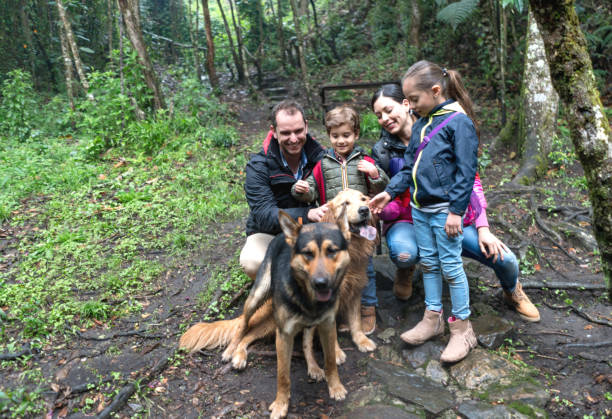 Happy family hiking outdoors with dogs picture id688307552?b=1&k=6&m=688307552&s=612x612&w=0&h=8vslpf9zqib7gwo4u8joqvblrxia72 wlk8m6jpdwmm=
