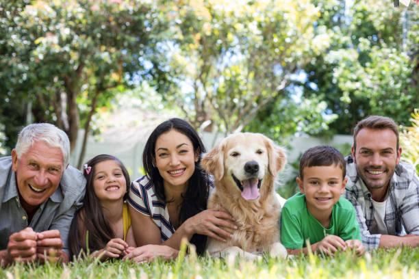 Happy family in a park stock photo
