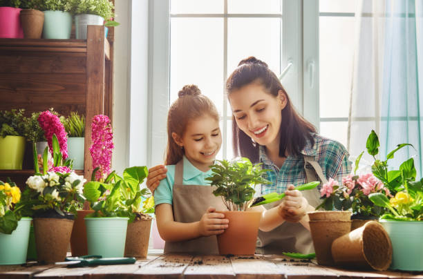 happy family in spring day - house with flowers stock photos and pictures