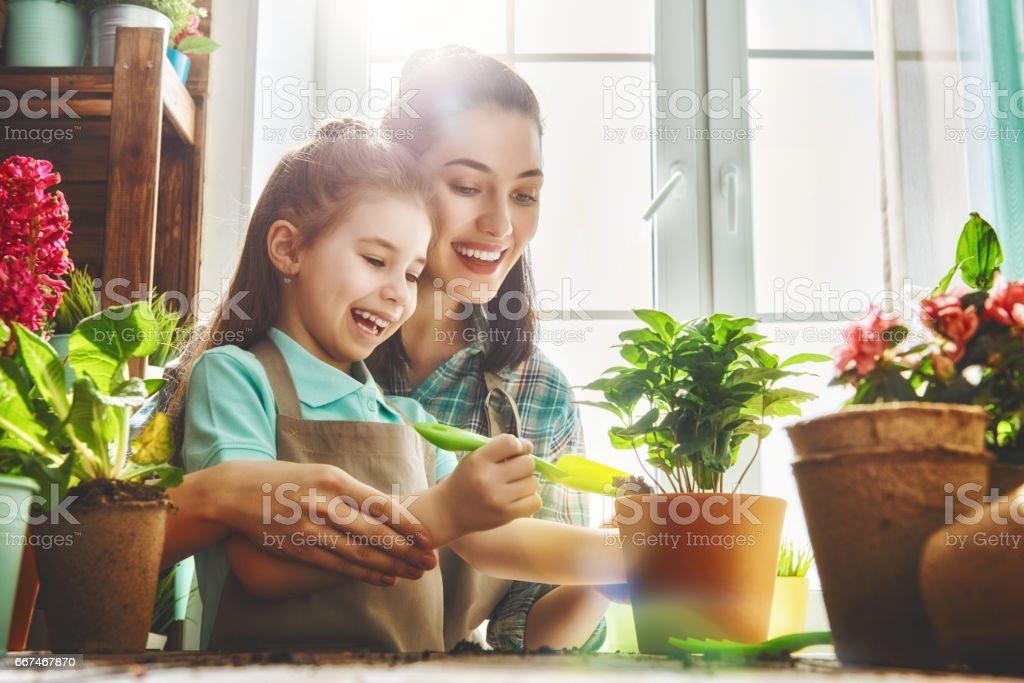 Happy family in spring day stock photo