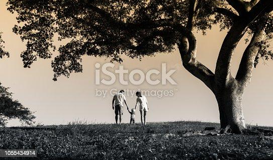istock Happy family in the park 1055434914