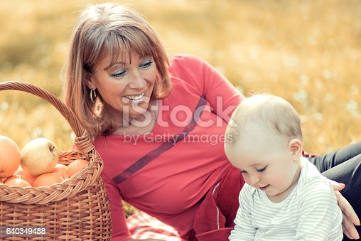 istock Happy family in the park 640349488
