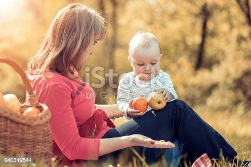 640349426istockphoto Happy family in the park 640349544
