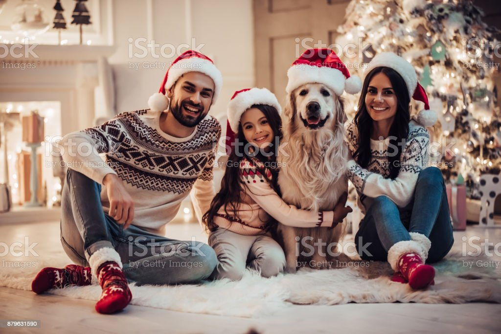 Happy family is waiting for the New Year in Santa Claus hats while sitting near beautiful Christmas tree at home. Merry Christmas and Happy New Year! Happy family with dog labrador retriever are waiting for the New Year in Santa Claus hats while sitting near beautiful Christmas tree at home. Adult Stock Photo