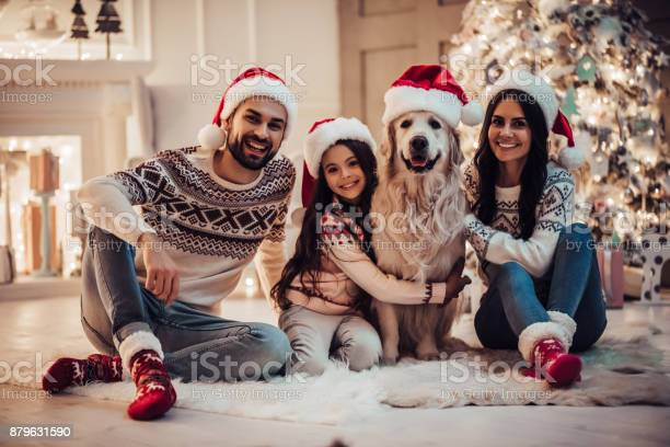 Happy family is waiting for the new year in santa claus hats while picture id879631590?b=1&k=6&m=879631590&s=612x612&h=mgyywu61 vp7mqo3o2sfr87ysujfop txhhbbxvfgju=