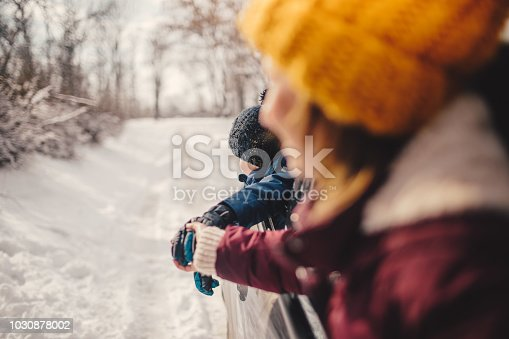 istock Happy family on a winter road trip 1030878002