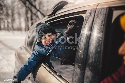 istock Happy family on a winter road trip 1030878084