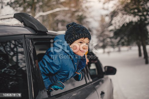 istock Happy family on a winter road trip 1030878178