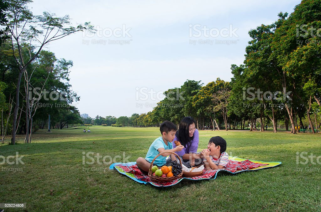 happy family picnic stock photo