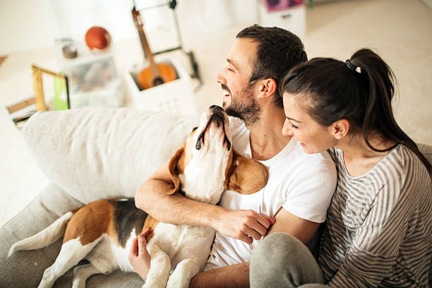 happy family - house hunting stock photos and pictures