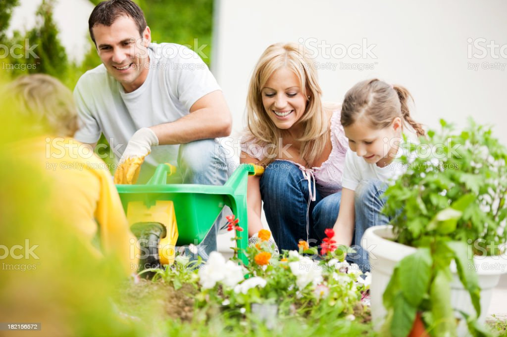 Happy family planting flowers. royalty-free stock photo