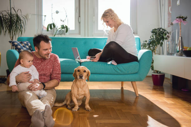 happy family relaxing at home - family room stock photos and pictures