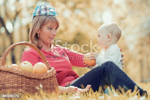 istock Happy family relaxing in the park,having fun. 654694274