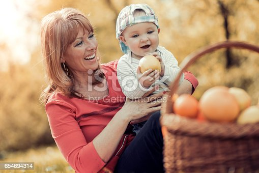 istock Happy family relaxing in the park,having fun. 654694314