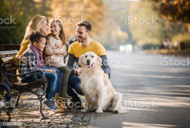Happy family relaxing on a park bench with their retriever in autumn picture id1143228702?b=1&k=6&m=1143228702&s=612x612&h=qta3mnnm7h4n cgppk1c3iccteb847mrwa3ca5vig60=