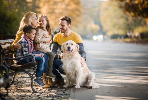 Happy family relaxing on a park bench with their retriever in autumn picture id1143228702?b=1&k=6&m=1143228702&s=612x612&w=0&h=9lsmifdco7va1d9sa975nzgjwlnrbw5fx6drppeirak=