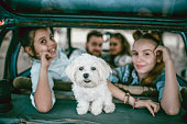 Happy Family Riding In Car With Pet Puppy
