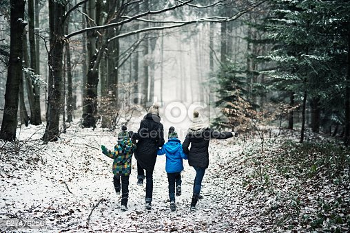 istock Happy family running in beautiful winter forest 627476256