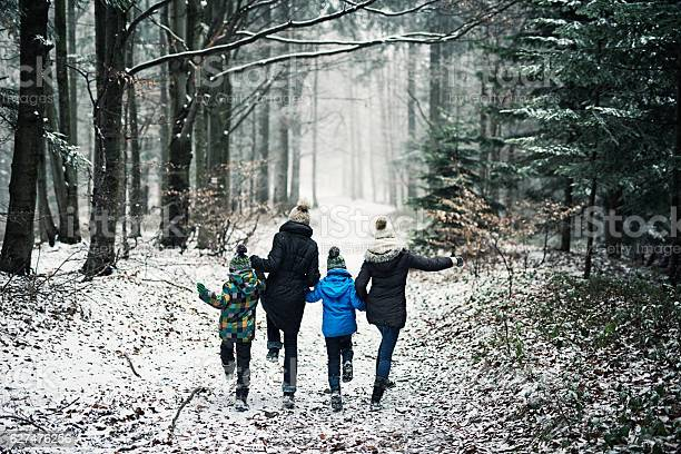 Photo of Happy family running in beautiful winter forest