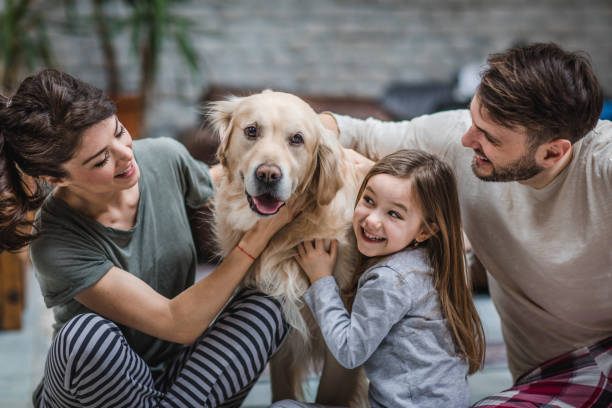 Happy family spending time with their dog at home. stock photo