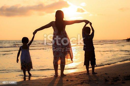497142294 istock photo Happy family standing on the beach 497113987