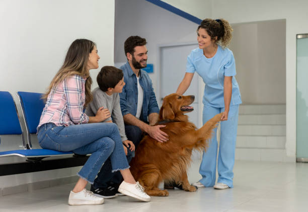 Happy family taking their dog to the vet picture id1162639299?b=1&k=6&m=1162639299&s=612x612&w=0&h=xvzg2gglvk1yoskentlz8pi77rc4ayytcfztc1xlqmm=