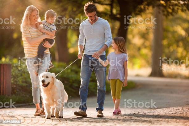 Happy family talking while walking with a dog in spring day picture id958658988?b=1&k=6&m=958658988&s=612x612&h=b0pnpbil8ij9l70depoytdhhw9bgv0kbguufg0dz rs=
