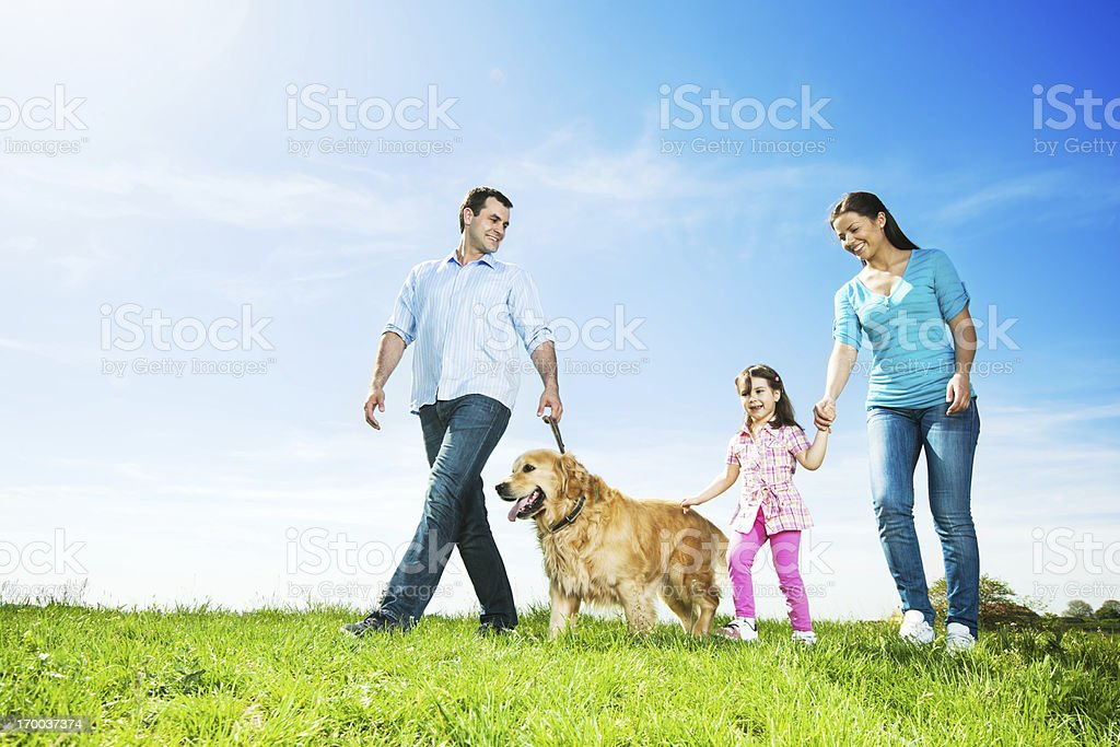 Happy family walking  dog in a park. stock photo