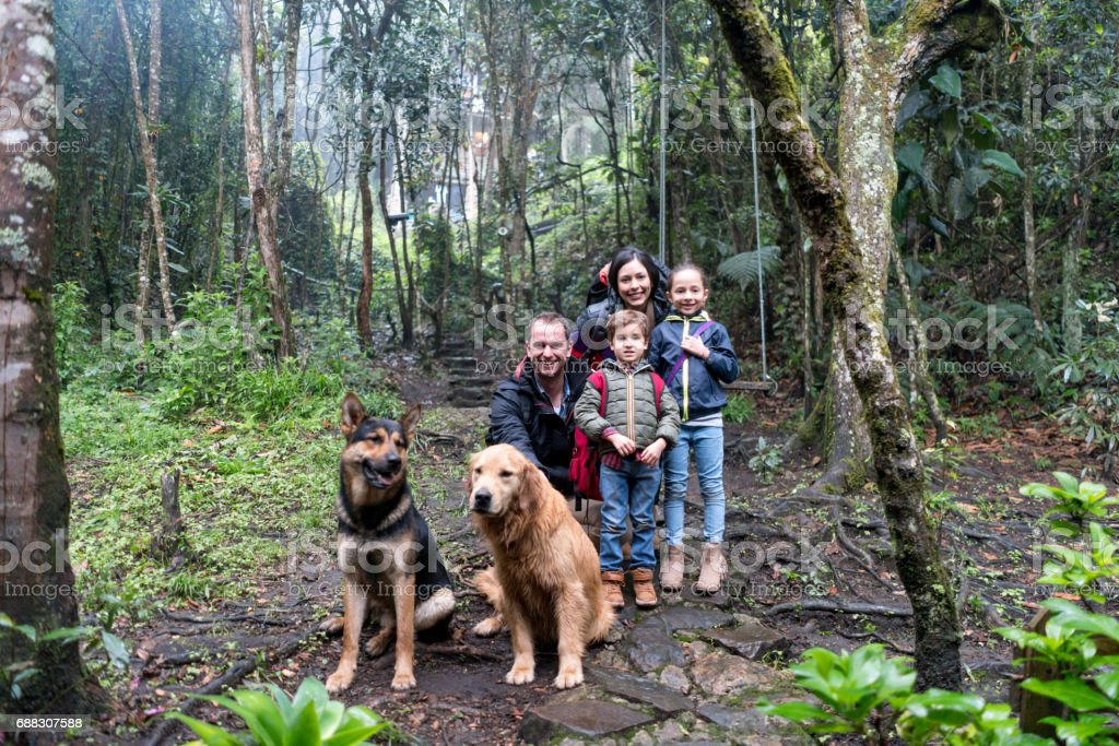 Happy Family Walking In The Woods With Their Dogs Royalty Free Stock Photo