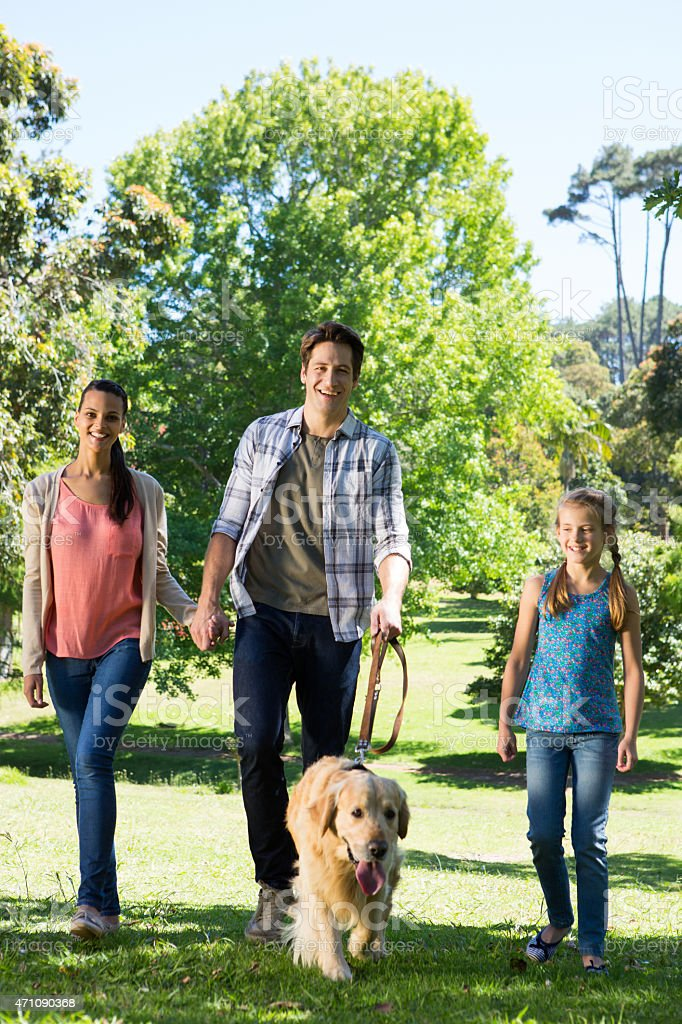 Happy family walking their dog in the park stock photo