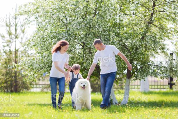 Happy family with a white dog in a summer park picture id969031920?b=1&k=6&m=969031920&s=612x612&h=pxqw7qwbn2cyqptkea5nvjhygr a5fp bpyu0utnxty=